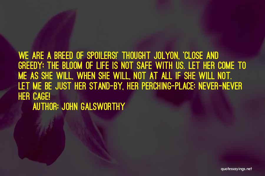 A Safe Place Quotes By John Galsworthy