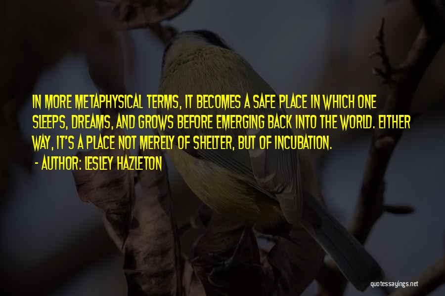 A Safe Place Quotes By Lesley Hazleton