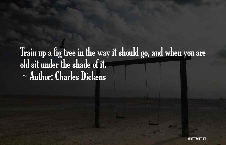 A Shade Tree Quotes By Charles Dickens