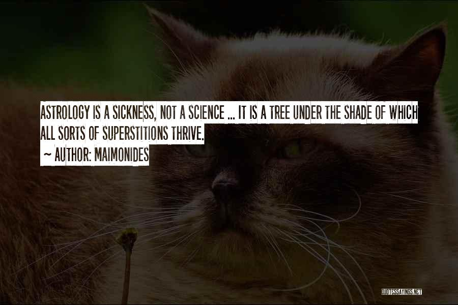 A Shade Tree Quotes By Maimonides
