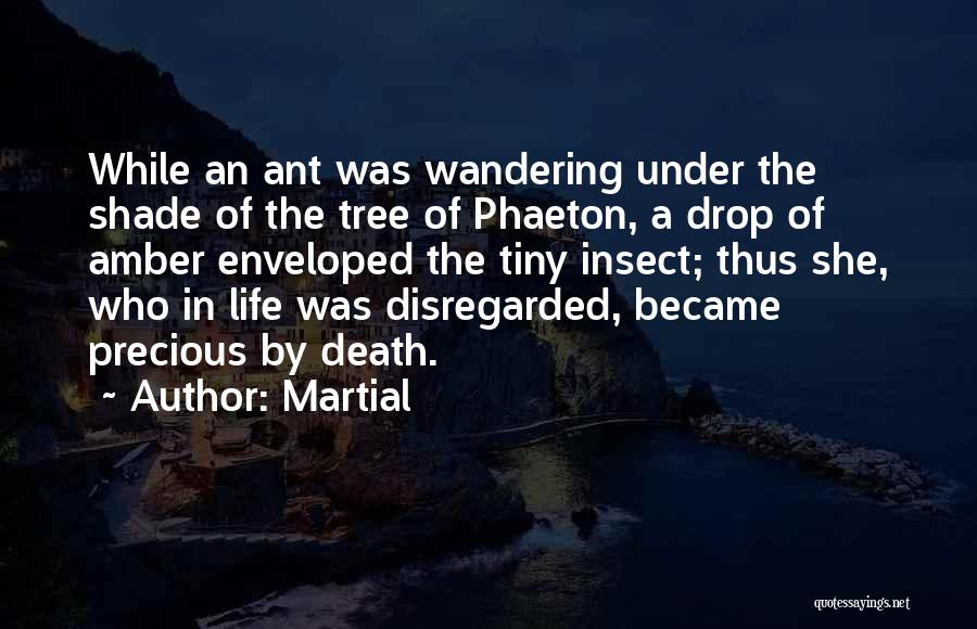 A Shade Tree Quotes By Martial