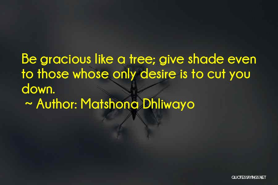 A Shade Tree Quotes By Matshona Dhliwayo