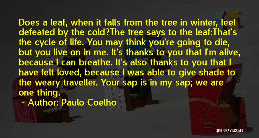 A Shade Tree Quotes By Paulo Coelho