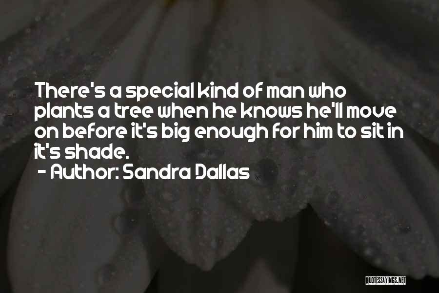 A Shade Tree Quotes By Sandra Dallas