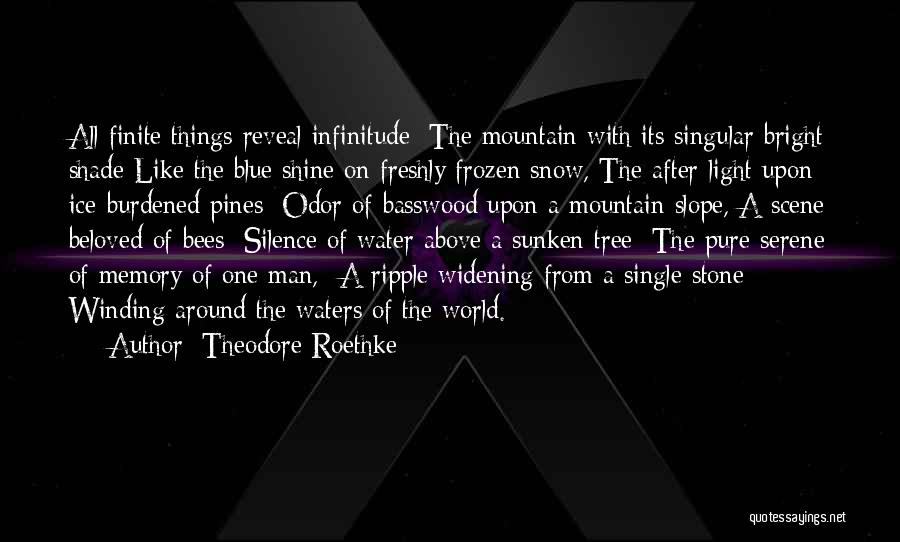 A Shade Tree Quotes By Theodore Roethke