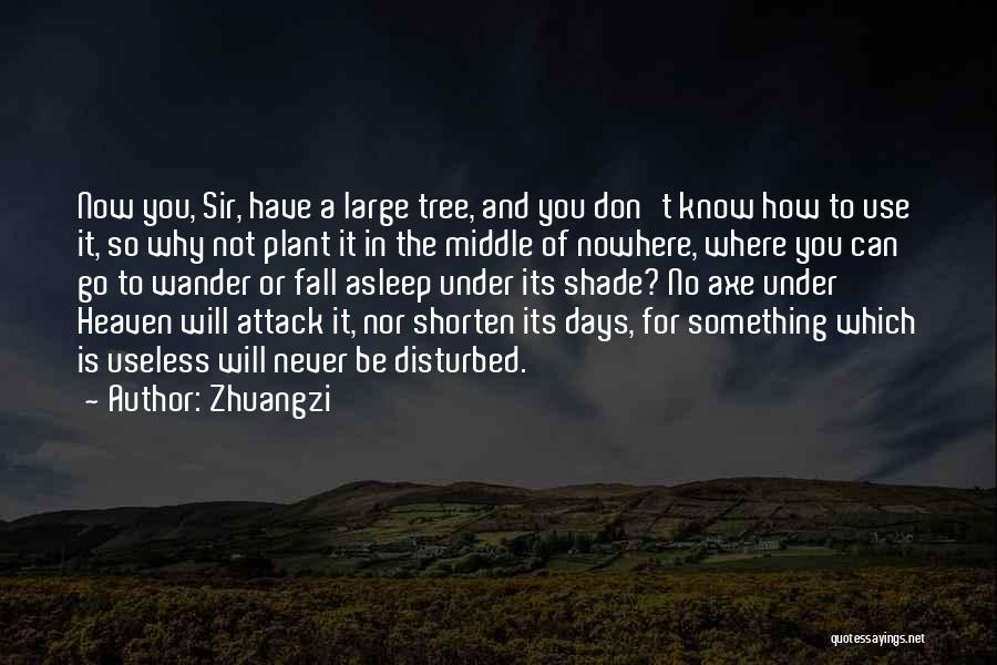 A Shade Tree Quotes By Zhuangzi