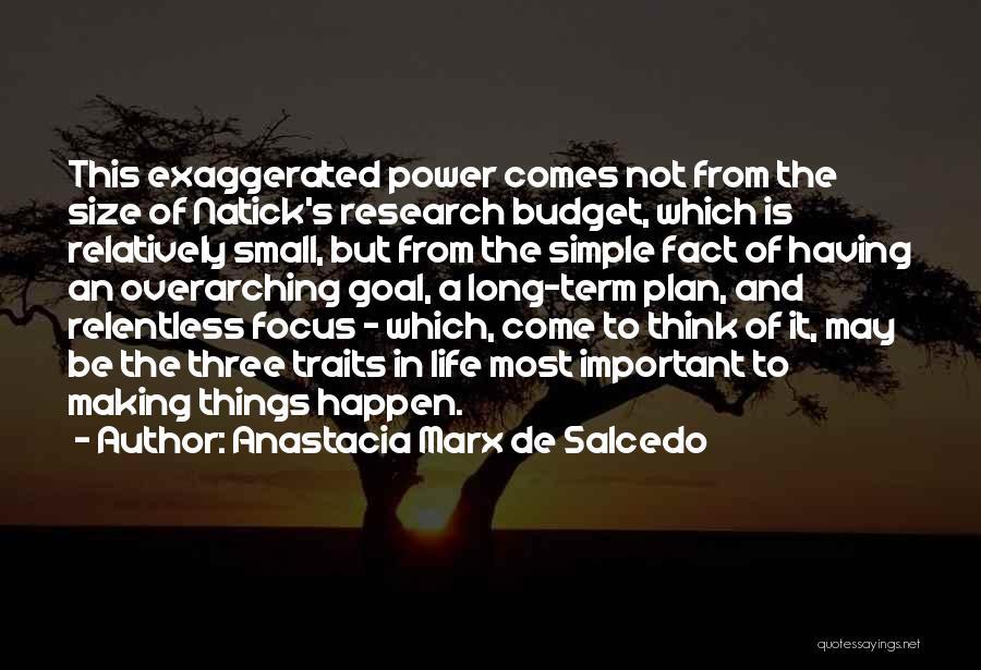 A Simple Plan Quotes By Anastacia Marx De Salcedo