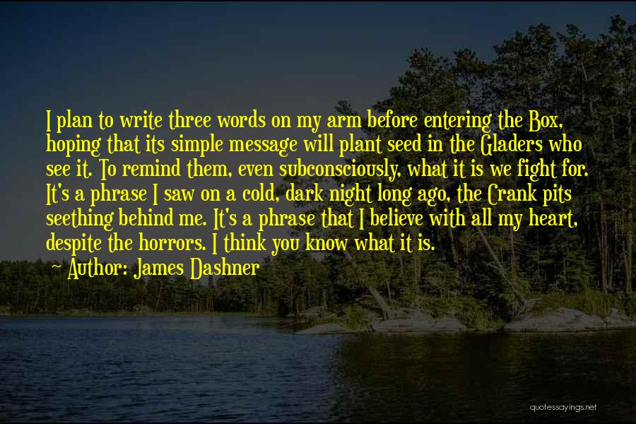 A Simple Plan Quotes By James Dashner