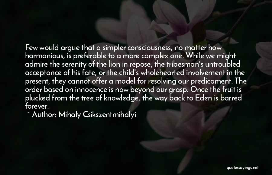 A Simpler Life Quotes By Mihaly Csikszentmihalyi