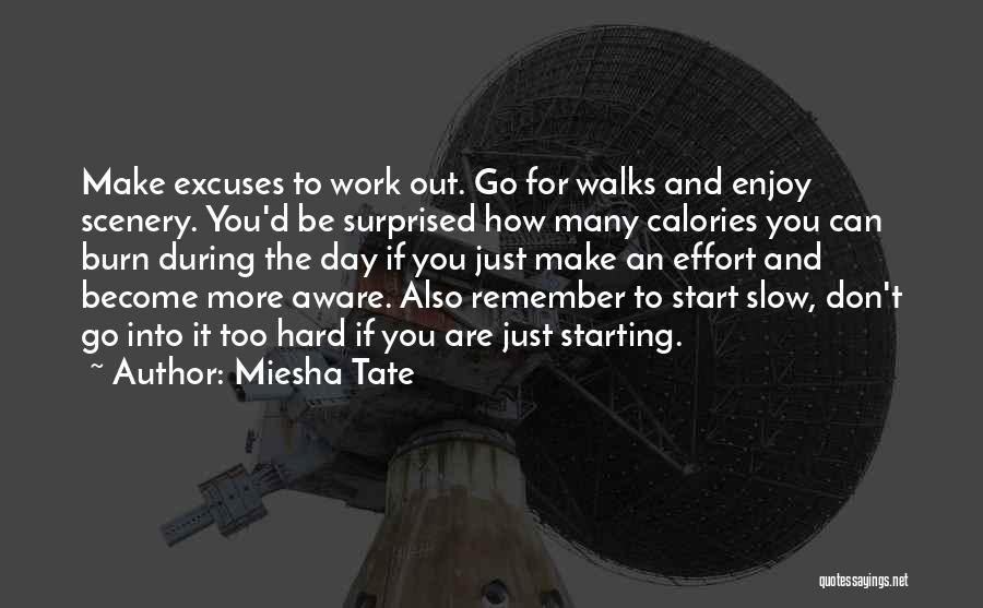 A Slow Day At Work Quotes By Miesha Tate
