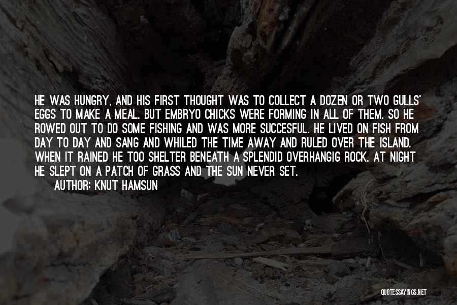 A Sunset Quotes By Knut Hamsun