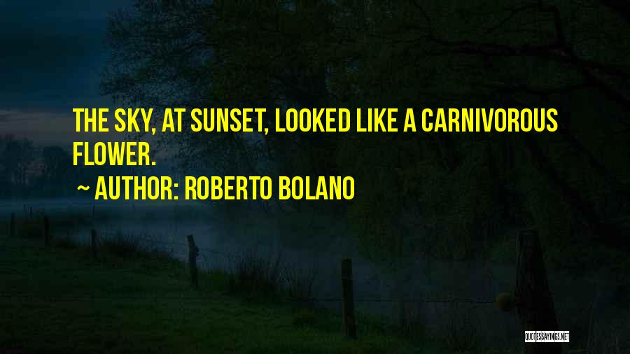 A Sunset Quotes By Roberto Bolano