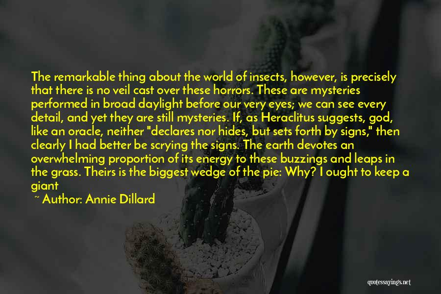 A To Z Mysteries Quotes By Annie Dillard