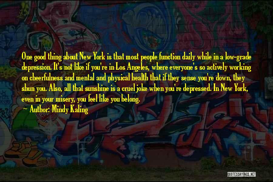 A While Quotes By Mindy Kaling
