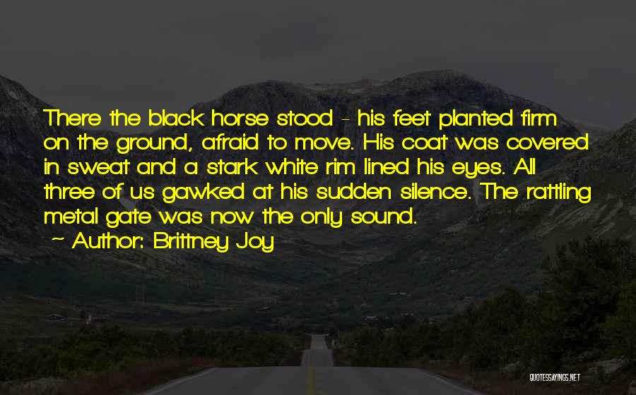 A White Horse Quotes By Brittney Joy