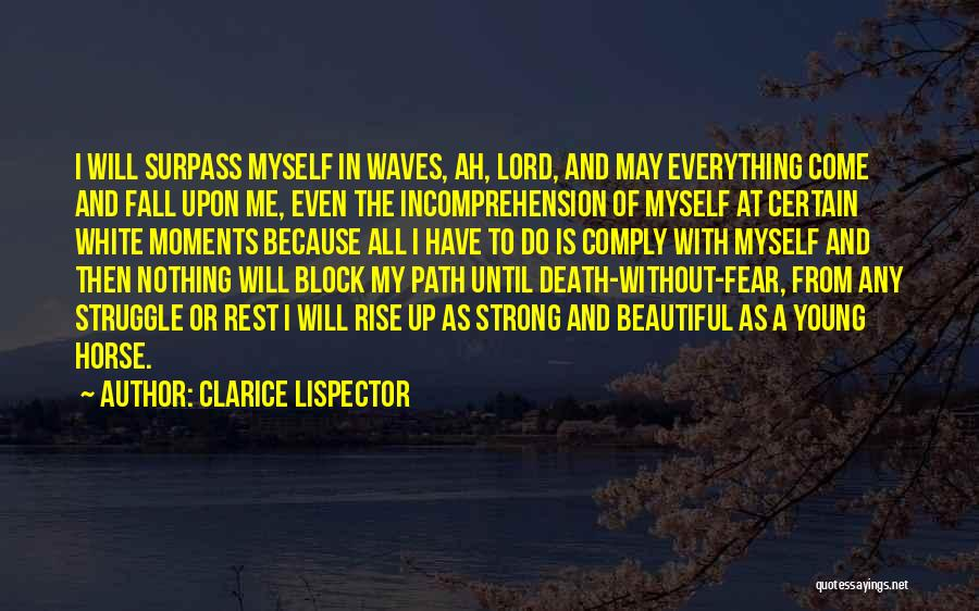 A White Horse Quotes By Clarice Lispector