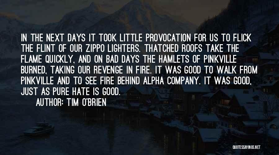 A Zippo Quotes By Tim O'Brien