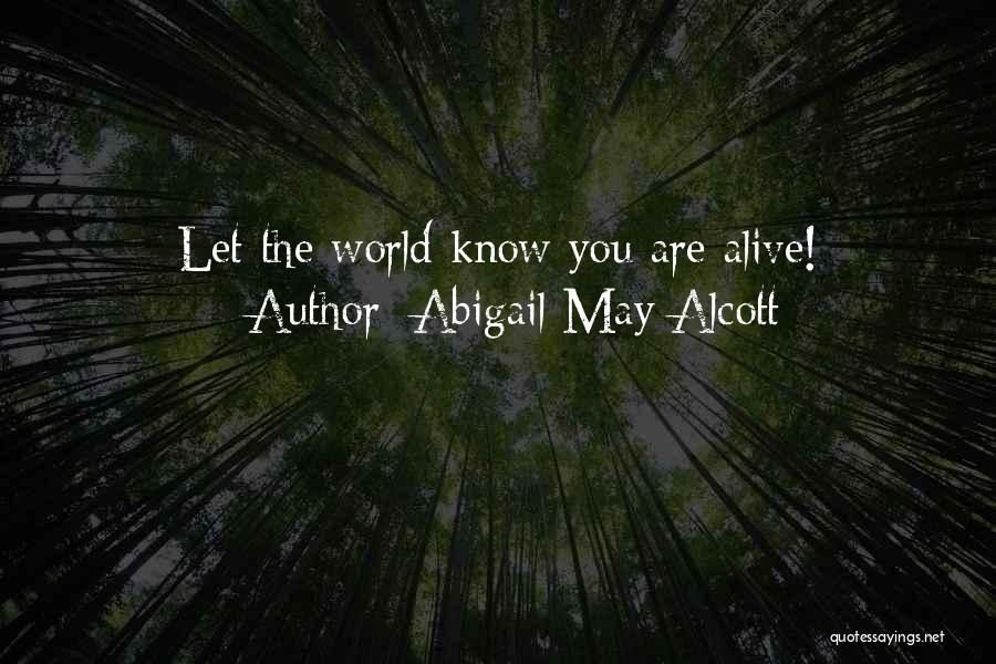 Abigail May Alcott Quotes 2070273