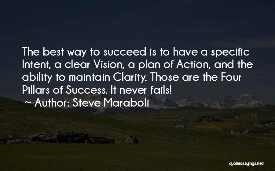 Ability To Succeed Quotes By Steve Maraboli