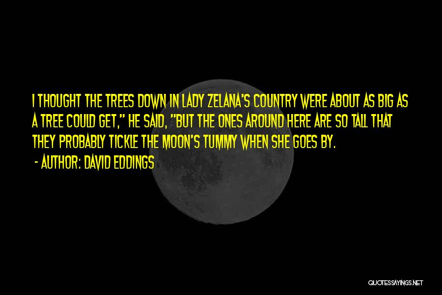 About The Moon Quotes By David Eddings