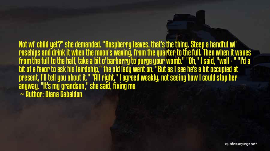 About The Moon Quotes By Diana Gabaldon
