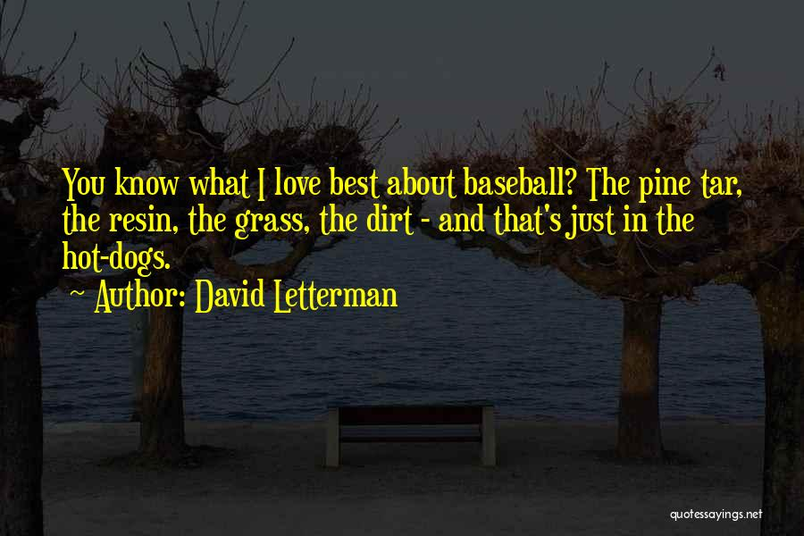 About You Love Quotes By David Letterman