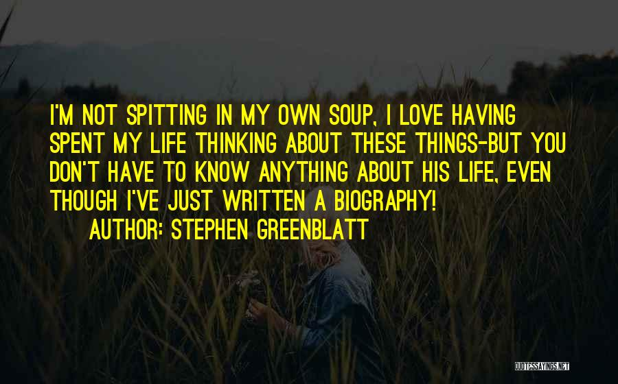 About You Love Quotes By Stephen Greenblatt