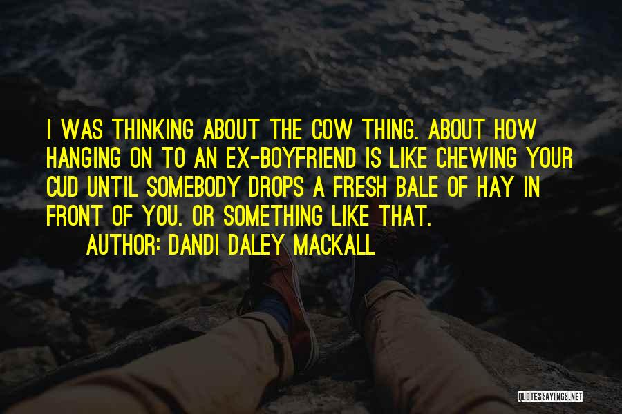 About Your Boyfriend Quotes By Dandi Daley Mackall