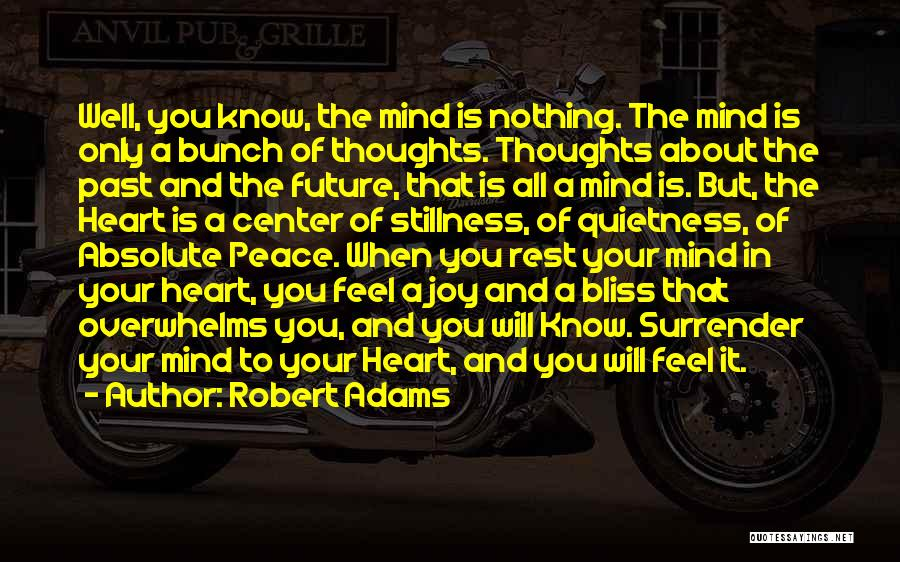 Absolute Peace Quotes By Robert Adams