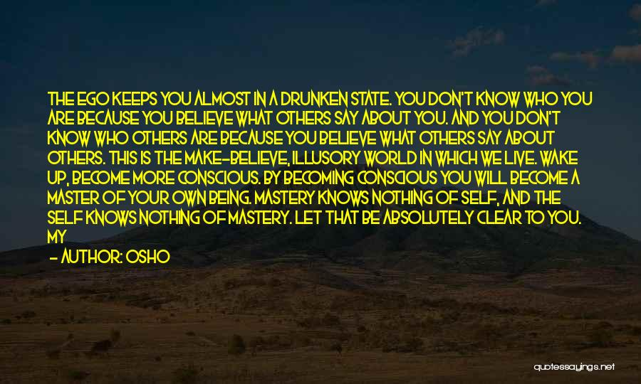 Absolutely Nothing Quotes By Osho