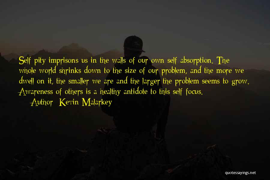 Absorption Quotes By Kevin Malarkey