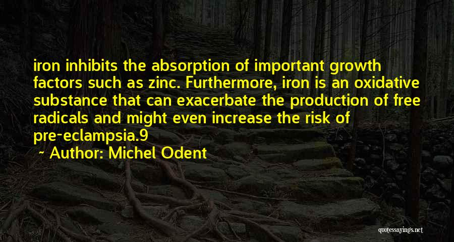 Absorption Quotes By Michel Odent