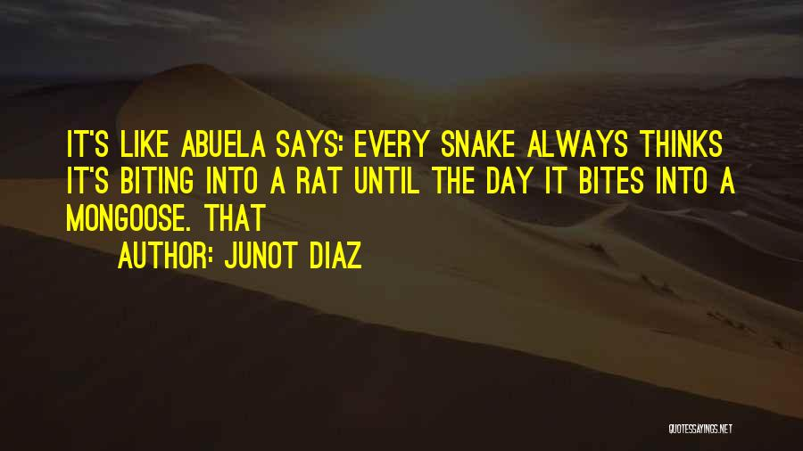 Abuela Quotes By Junot Diaz
