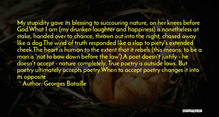 Accept Changes Quotes By Georges Bataille
