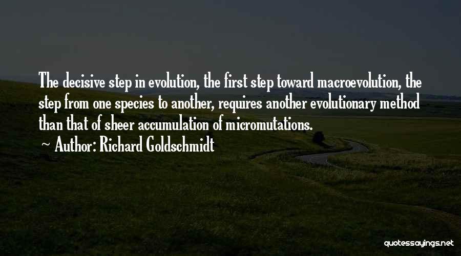 Accumulation Quotes By Richard Goldschmidt