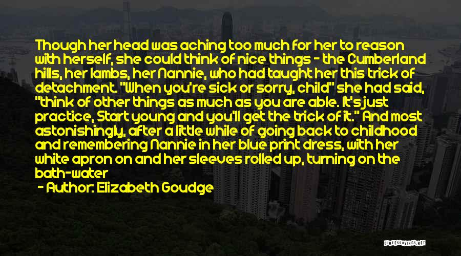 Aching Back Quotes By Elizabeth Goudge