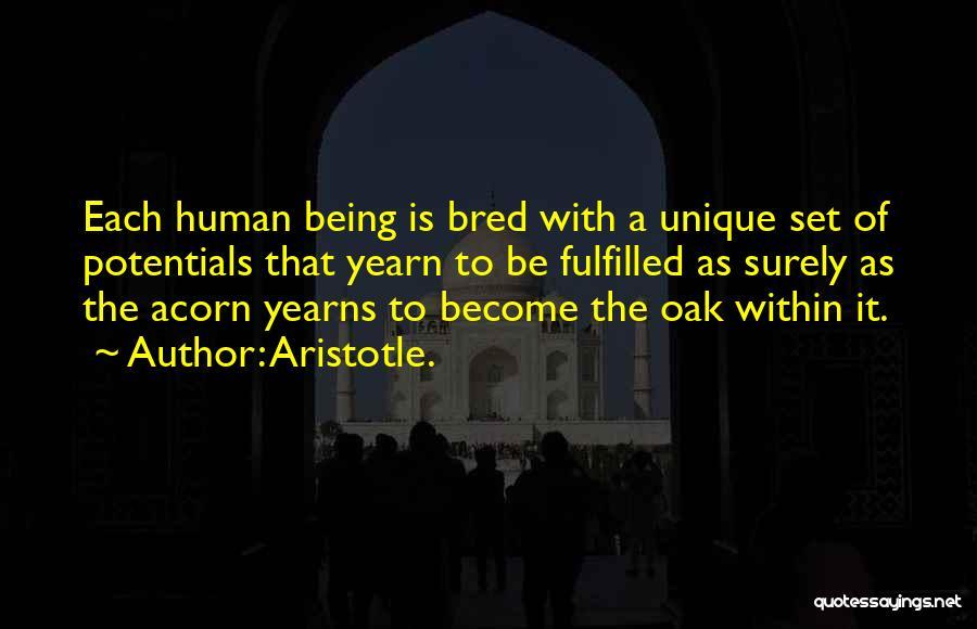 Acorn Quotes By Aristotle.