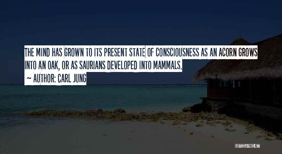Acorn Quotes By Carl Jung