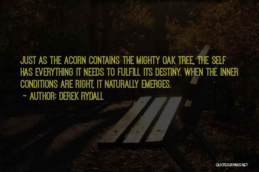 Acorn Quotes By Derek Rydall