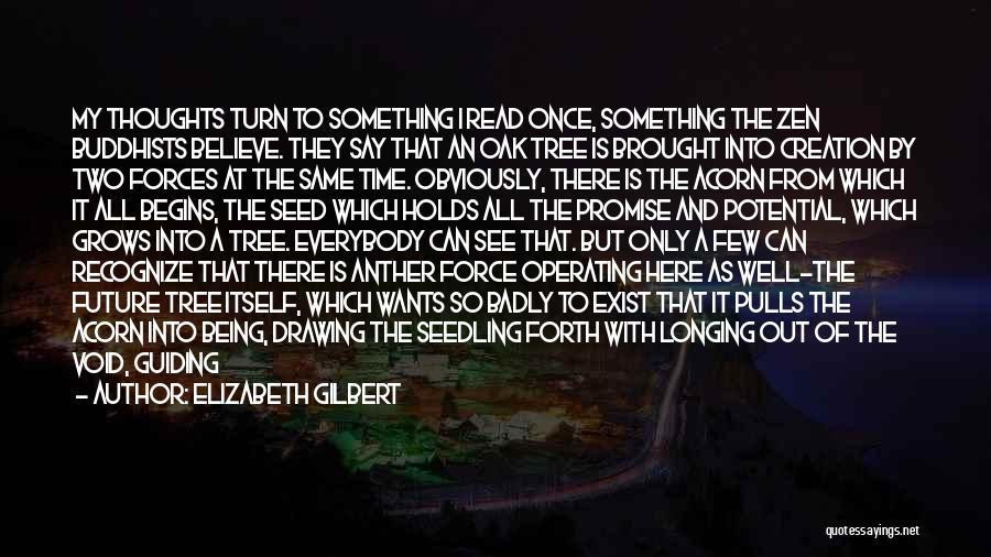 Acorn Quotes By Elizabeth Gilbert