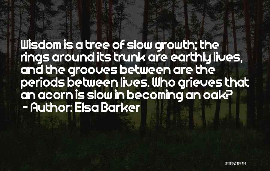 Acorn Quotes By Elsa Barker