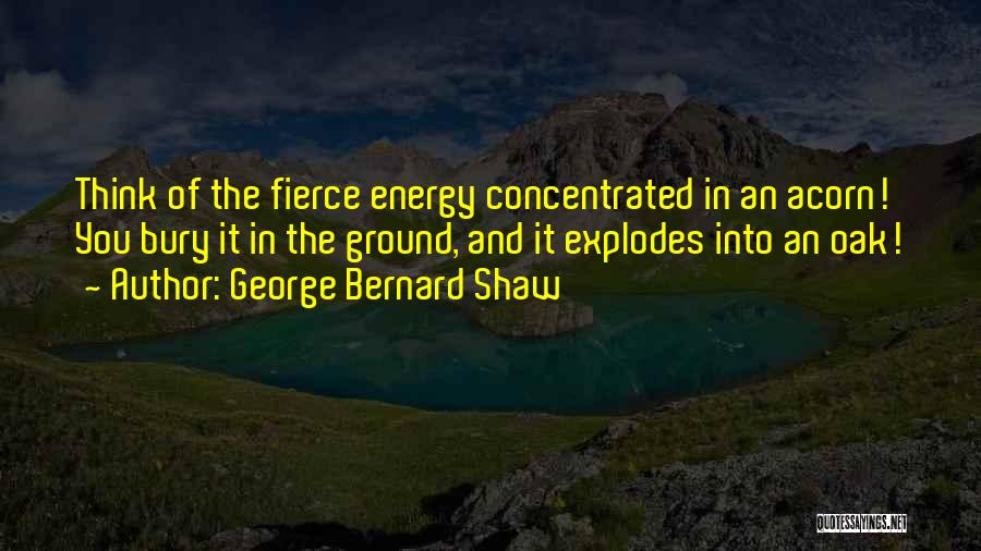 Acorn Quotes By George Bernard Shaw