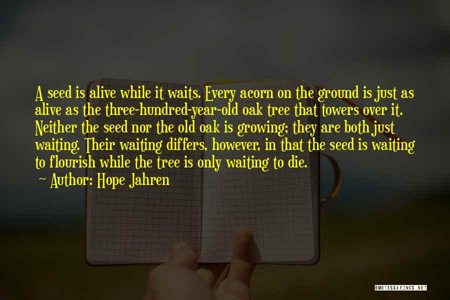 Acorn Quotes By Hope Jahren
