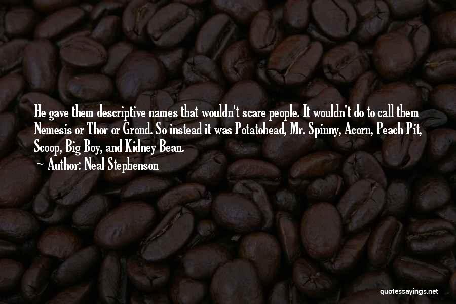 Acorn Quotes By Neal Stephenson