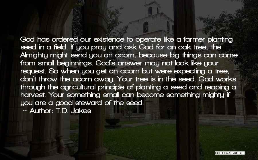 Acorn Quotes By T.D. Jakes