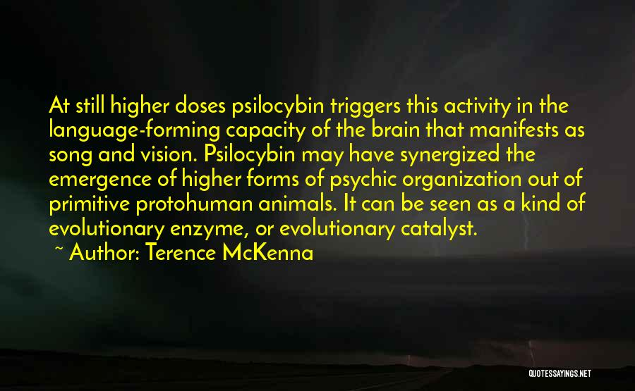 Activity Quotes By Terence McKenna