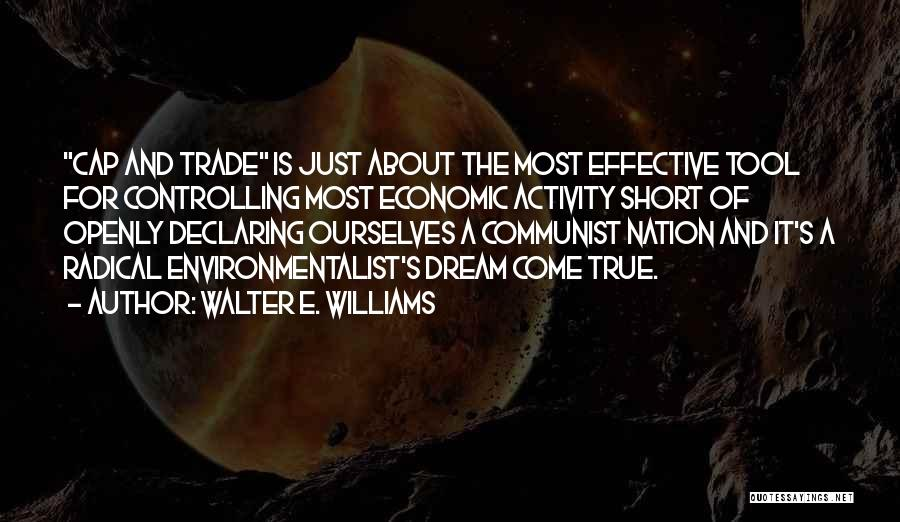 Activity Quotes By Walter E. Williams