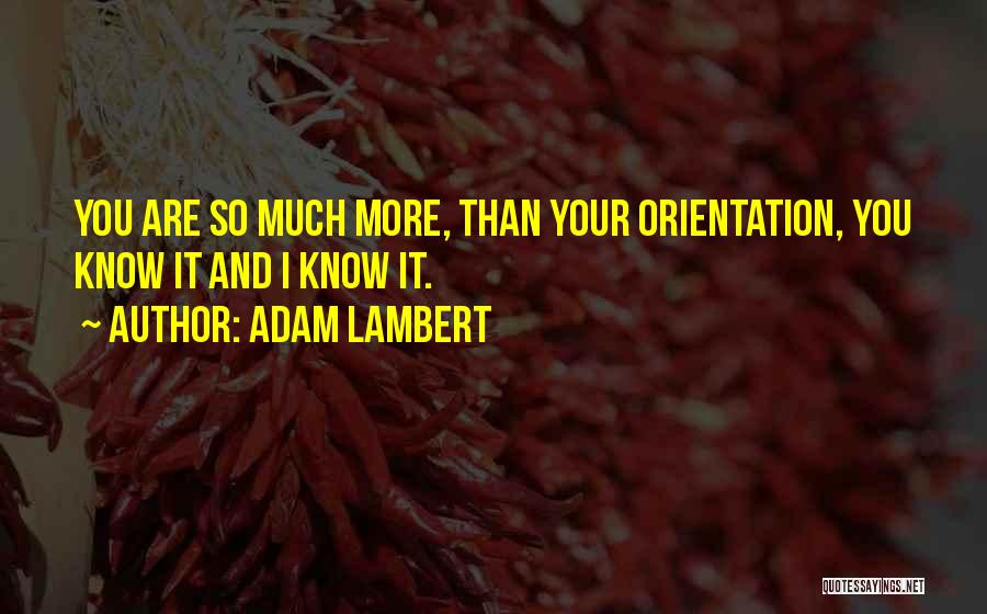 Adam Lambert Quotes 1236984