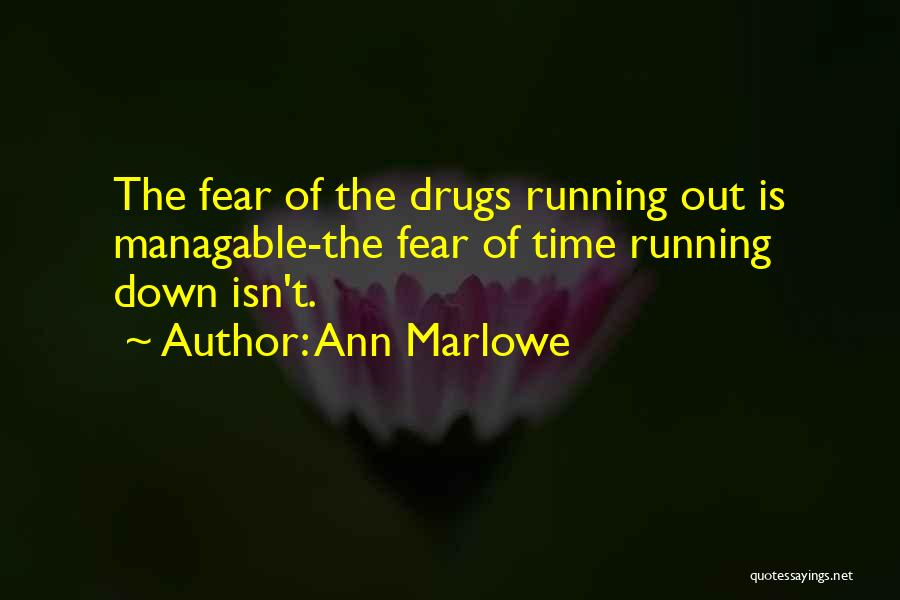 Addiction Recovery Quotes By Ann Marlowe