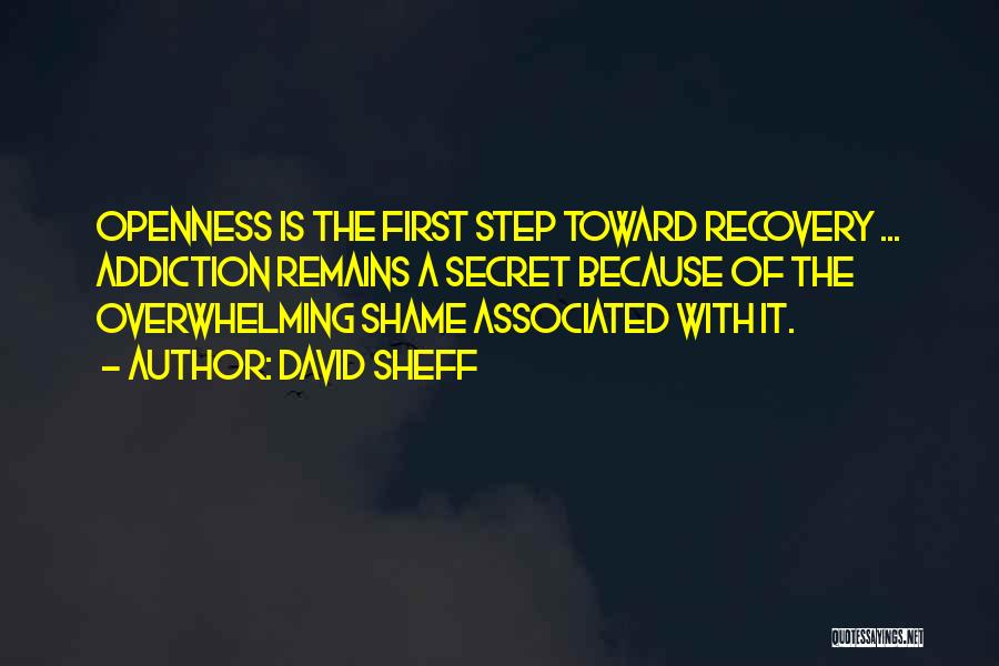 Addiction Recovery Quotes By David Sheff